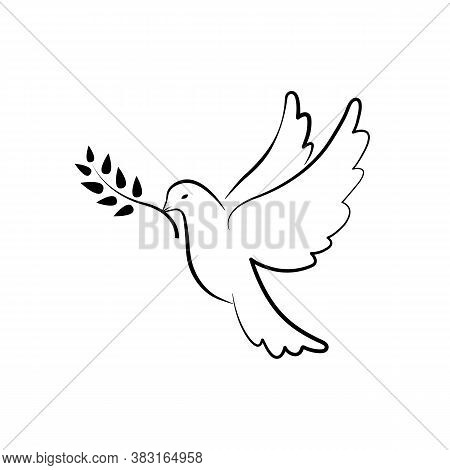 Dove Of Peace Symbol. Dove With Olive Branch. Hand Drawn Pigeon. Vector Eps10
