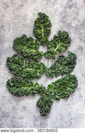 Kale Cabbage Leaves In The Form Of A Christmas Tree On A Gray Background, Top View, Flat Lay