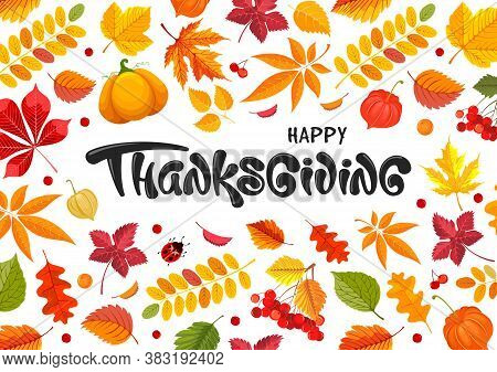 Happy Thanksgiving Festive Typography Lettering With Autumn Fall Leaves, Pumpkin, Rowanberry And Phy