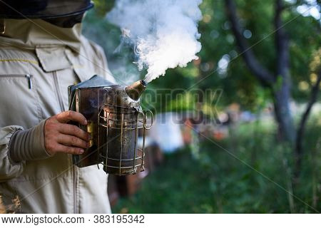 Unrecognizable Man Beekeeper Working In Apiary, Using Bee Smoker.