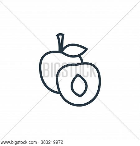 peach icon isolated on white background from food collection. peach icon trendy and modern peach sym