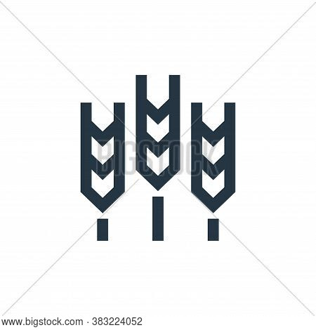 grain icon isolated on white background from nature collection. grain icon trendy and modern grain s