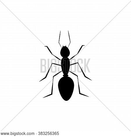 Simple Black Insect Ant Icon. Vector Illustration