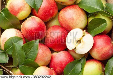 Ripe garden apple fruits closeup. Top view flat lay