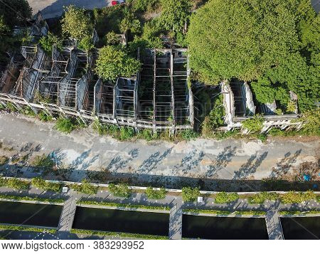 Sia Boey Heritage House With Grow Of Green Plant.