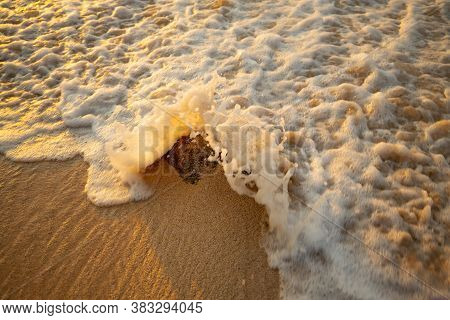 Scenic Seascape. Foam Wave Splashing Against The Stone At The Beach. Sunset Time. Waterscape For Bac