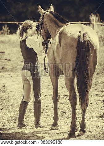 Animal And Human Love, Equine Concept. Jockey Woman Walking With Horse On Meadow