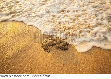 Scenic Seascape. Foam Wave Approaching The Stone At The Beach. Sunset Time. Waterscape For Backgroun