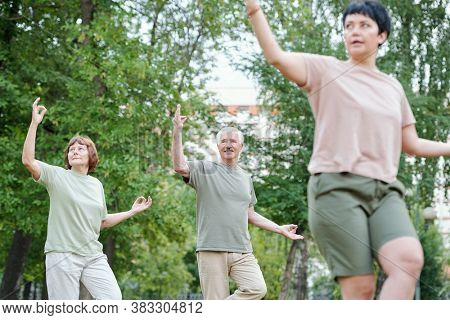 Content senior couple performing slow-flowing movements at group qigong class outdoors
