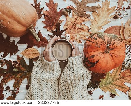 Hand Holding Warm Coffee And Pumpkins And Colorful Leaves Top View. Stylish Autumn Flat Lay. Hello F