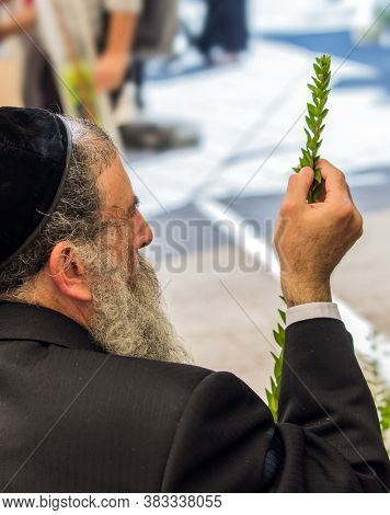 JERUSALEM, ISRAEL - SEPTEMBER 20, 2018: The Orthodox Jew in a black yarmulka chooses a  myrtle. Preparing for the Sukkot Autumn Harvest holiday. The concept of photo tourism