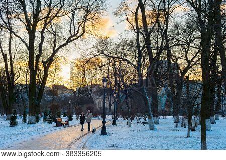 Kiev, Ukraine - January 06, 2020: Couple With A Dog Walking By Winter Mariinsky Park In Kiev.