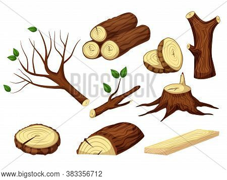 Wooden Trunk. Chopped Wooden Trunk, Log, Timber, Stump And Tree Branch Raw Forest Material Isolated