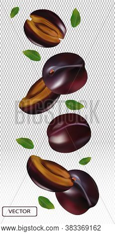 Realistic Plum On Transparent Background. Whole Plum, Sliced Plum With Green Leaves. Illustration Fo