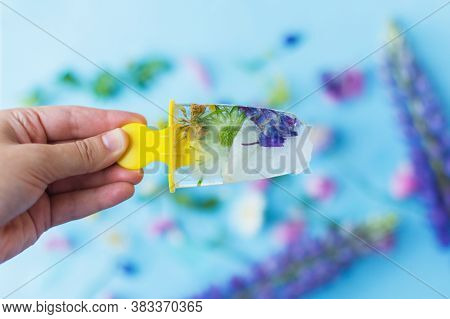 Hand Holding Floral Ice Pop With Summer Wildflowers On Background Of Ice Cubes Fresh Summer Flowers
