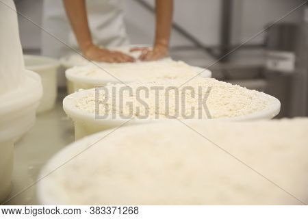 Moulds With Pressed Curd At Cheese Factory And Blurred Worker On Background