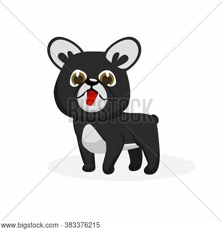 Bulldog Puppy. Isolated Funny Purebred Bulldog Puppy Dog Icon. Cute Doggy Pet Animal Cartoon Charact