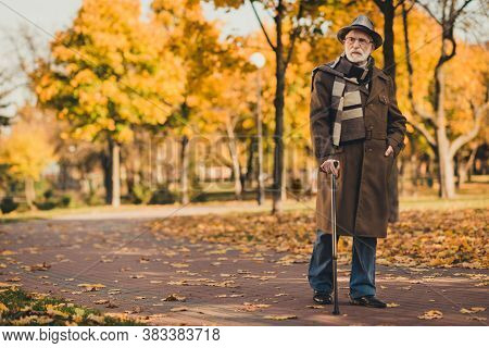 Full Length Photo Of Retired Grey Hair Curious Grandpa Man Walk Desert Park Stick Serious Search Ben