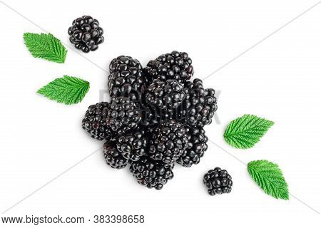 Blackberry Isolated On A White Background Closeup. Clipping Path And Full Depth Of Field. Top View.