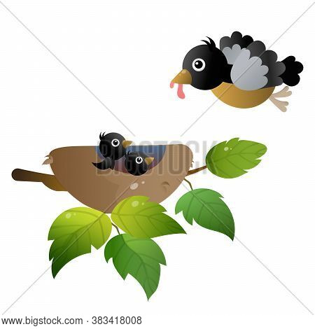 Color Image Of Cartoon Bird Nest With Nestlings Or Chicks On White Background. Vector Illustration F