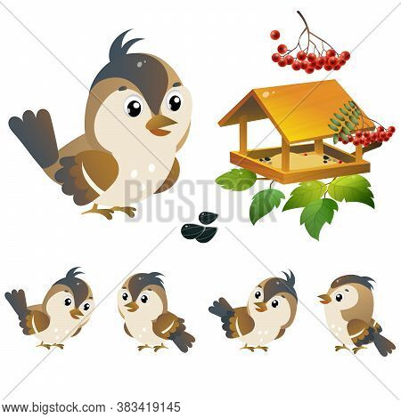 Sparrow. Color Image Of Cartoon Bird With Feeder On White Background. Vector Illustration Set For Ki