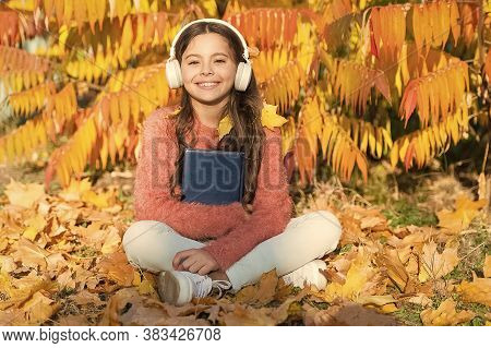 Schoolgirl Study. Study Every Day. Girl Read Book Autumn Day. Self Education Concept. Child Enjoy Re