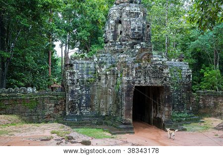 Vintage temple entrance and forest in Angkor Wat (Siem Reap, Cambodia). poster