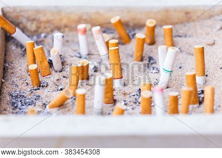 Many Cigarette Butts Discarded In Ashtray Many Cigarette Butts Discarded In Ashtray Illustrations Fo