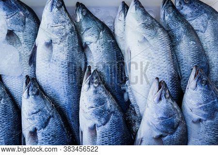 Seafood, Image Of Fresh Barramundi Fish In Market