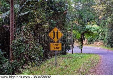 One Lane Ahead Road Sign Indicating Narrow Access For Passing Through A Rainforest