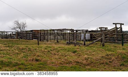 Old Empty Cattle Yards On A Country Property On A Dull And Overcast Day