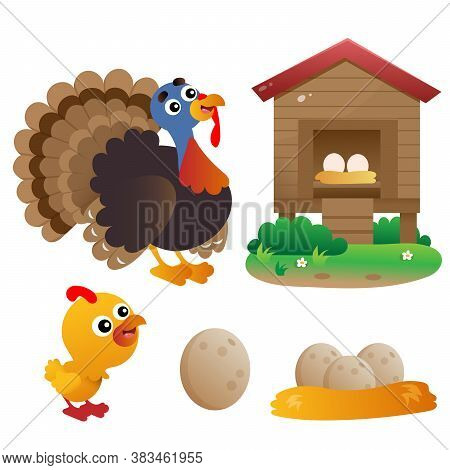 Color Images Of Cartoon Turkey With Nestling On White Background. Farm Animals. Vector Illustration
