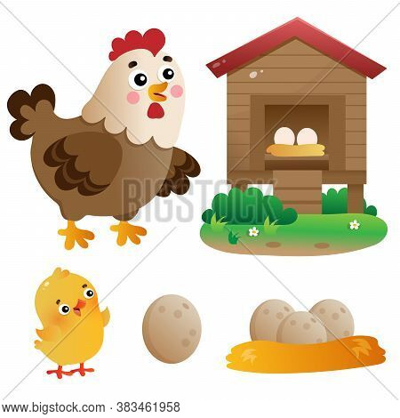 Color Images Of Cartoon Chicken Or Hen With Chick, Coop And Eggs. Farm Animals. Vector Illustration