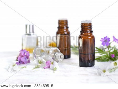 Bottles Of Essential Oil And Colorful Petals Of Flowers On White Table And White Background