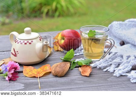 Cup Of Tea  On A Wooden Table In Garden With Teapot  Among Autumnal  Leaf And Red Apple On Wool Scar