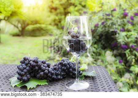 Grape Fruits In A Glass Of White Wine And Bunches Of Fresh Deep Black Berry Ripe Grapes With Green L