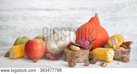 Various And Colorful Autumnal Vegetables And Fruits With Cob Of Corn Cut Into Pieces