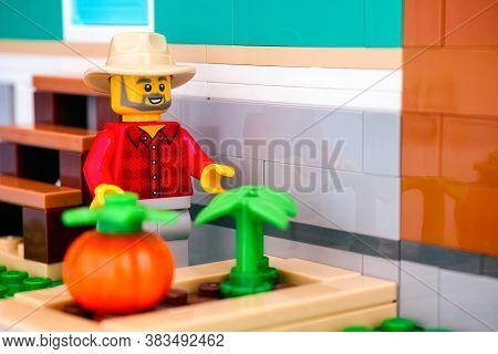 Tambov, Russian Federation - June 26, 2020 Lego Farmer Minifigure Near Vegetable Bed.