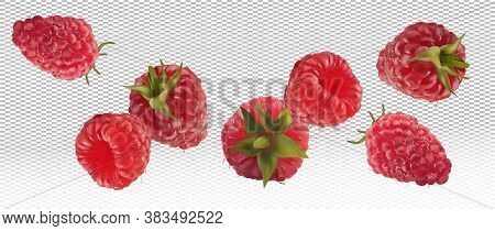 3d Realistic Raspberry On Transparent Background. Motion Raspberry From Different Angles. Flying Ber
