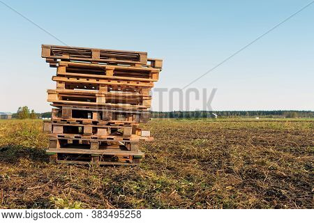 The Farmer Has Left A Pile Of Wooden Pallets On The Fields. They May Be Waiting For The Potato Crate
