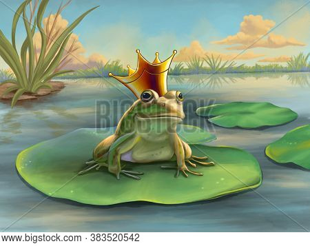 Frog prince waiting on a water lily. Digital illustration.