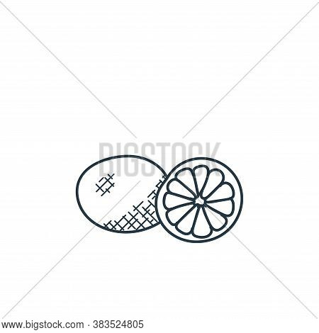 citrus fruit icon isolated on white background from food hand drawn collection. citrus fruit icon tr