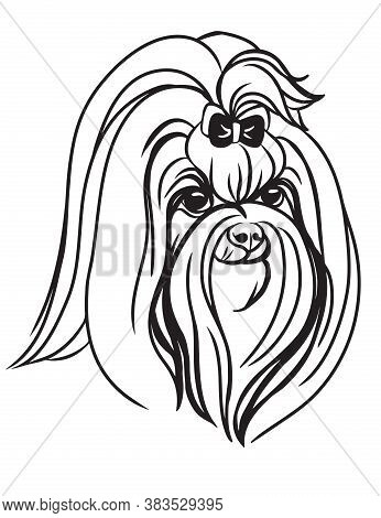 Decorative Outline Portrait Of Cute Maltese Dog Vector Illustration In Black Color Isolated On White