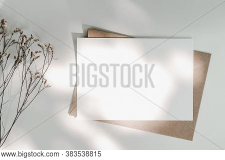 Blank White Paper On Brown Paper Envelope With Limonium Dry Flower And Sunlight. Mock-up Of Horizont