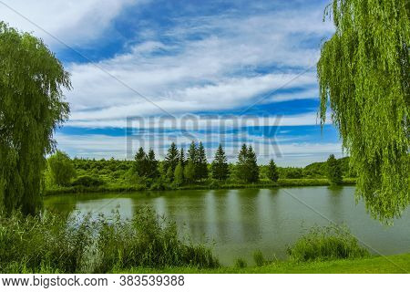 Picturesque Nature Scenic View Of Pond And Green Trees Park Outdoor Scenic Environment Space