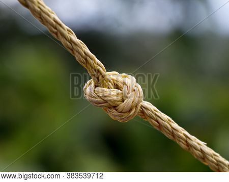 Close Up Shot Of An Old Yellow Color Nylon Coir With A Knot, Vintage.