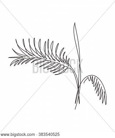 One Single Line Drawing Palm Faux Areca Leaf Vector Illustration. Tropical Leaves Style, Abstract Fl