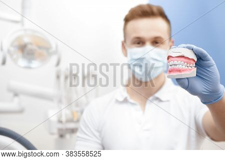 Handsome Young Male Dentist Demonstrating Teeth Mold