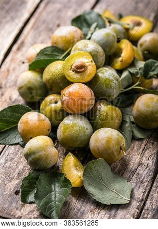 Ripe  Yellow  Plum Fruits Harvested In Fall As Background Texture. Ripe  Yellow  Plum Fruits Harvest