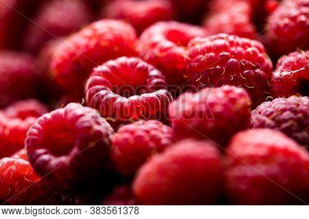 Fresh And Sweet Red Raspberries Texture. Fruit Pile Background. Raspberries Close Up. Macro Photo Fo